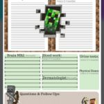 Minecraft Toronto Protocol Journal by Lisa Wickens