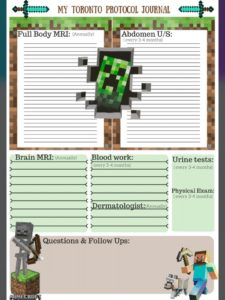 Minecraft Toronto Protocol Journal by Lisa Wickens