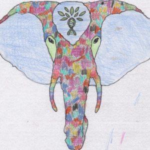 Bella's Elephant