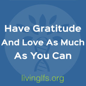 Life Lesson 4: Have Gratitude and Love As Much As You Can